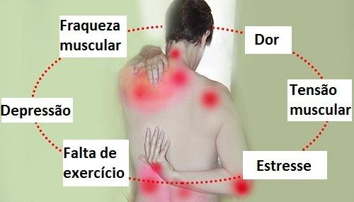circulo vicioso fibromialgia